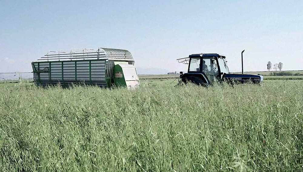 Lavorazione campi azienda agricola Jemma